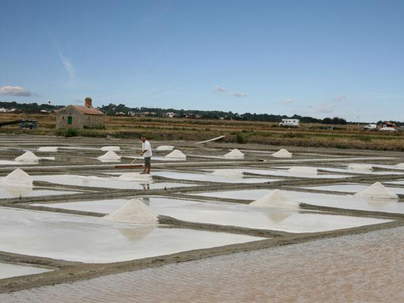 http://www.entre2voyages.com/photos/29/marais-salant-noirmoutier-.jpg